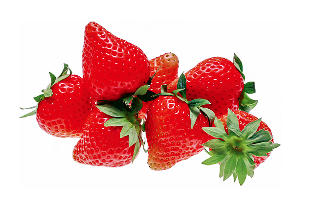 Saito Strawberry Farm