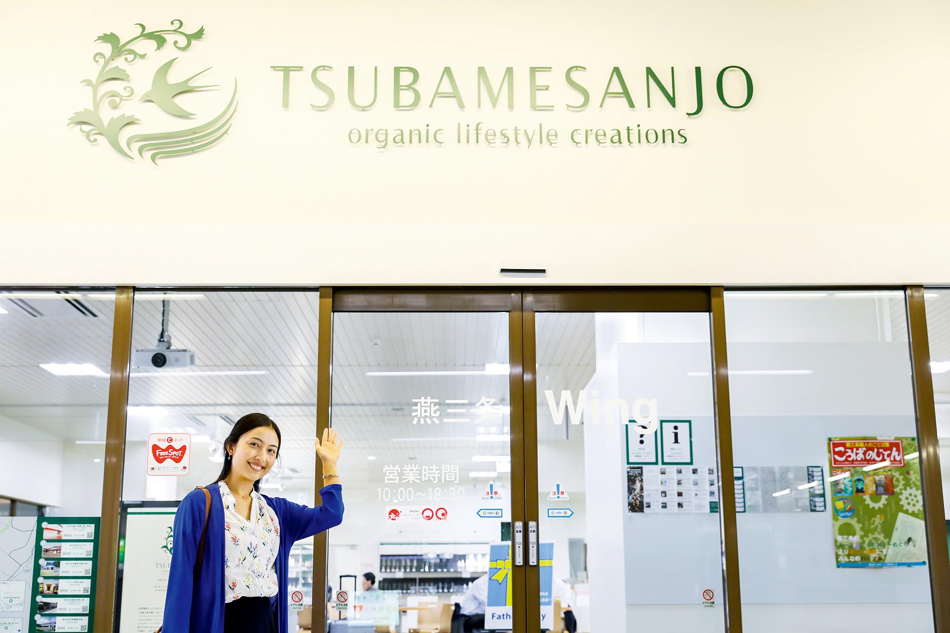 Tsubamesanjo Wing