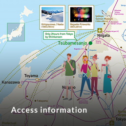Access information