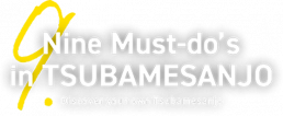 Nine Must-do's in TSUBAMESANJO